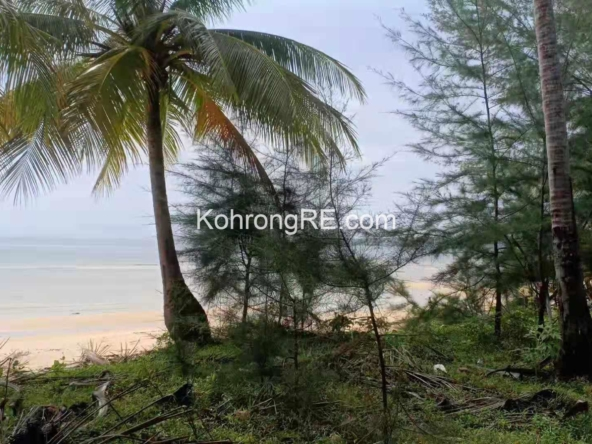 koh rong property kohrongre land for sale palm beach hard title land for rent beachfront property on cambodia islands next to song saa private island resort (1)