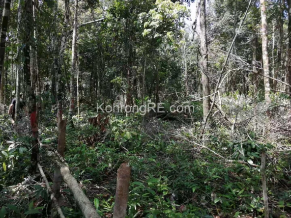 land for sale on koh rong island cambodia 2