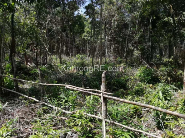 land for sale on koh rong island cambodia