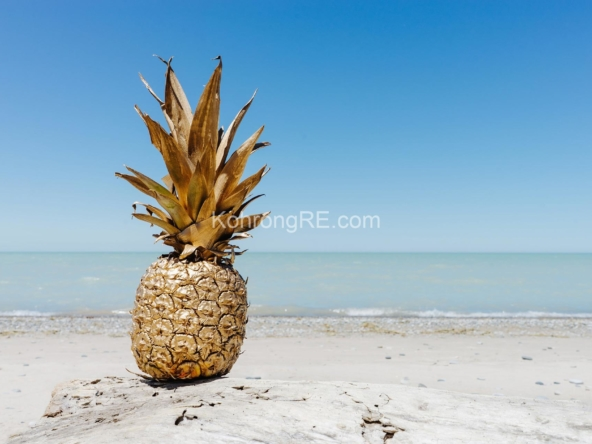 beachfront land for sale at Royal Beach in Koh Rong island, Cambodia, Hard title, white sand beach, Koh Rong property for sale, Koh Rong land for sale, Cambodia (6)