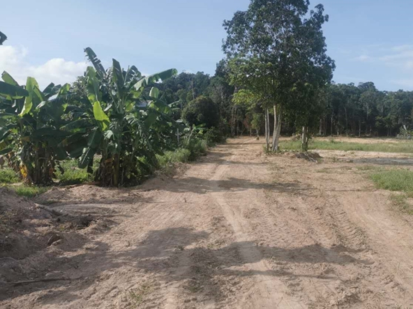 land plots for sale in Koh Rong Cambodia